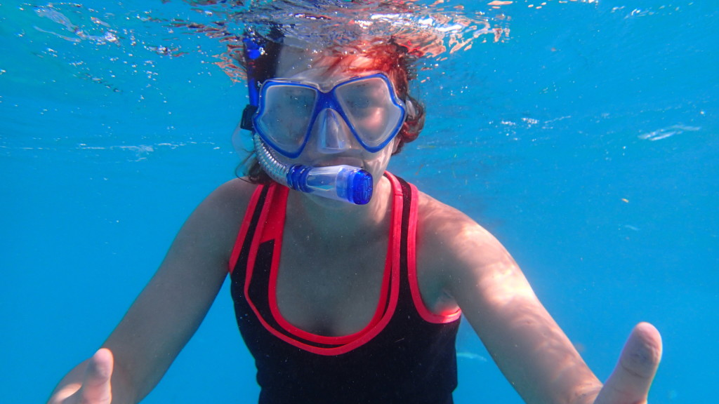 snorkling z rekinem